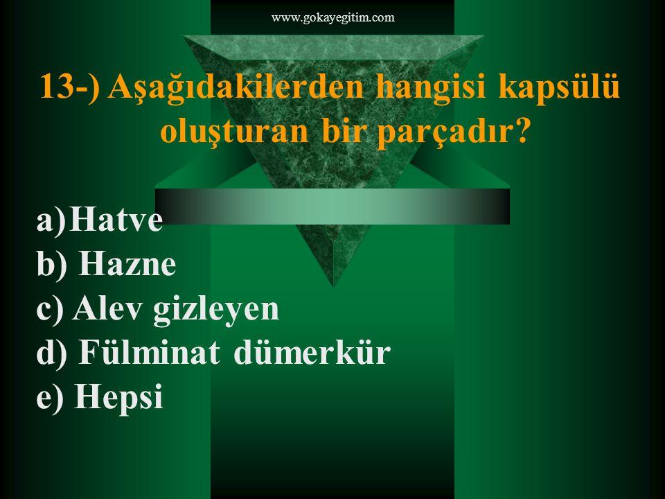 www.gokayegitim.com 13-) Aşağıdakilerden hangisi kapsülü oluşturan bir parçadır.