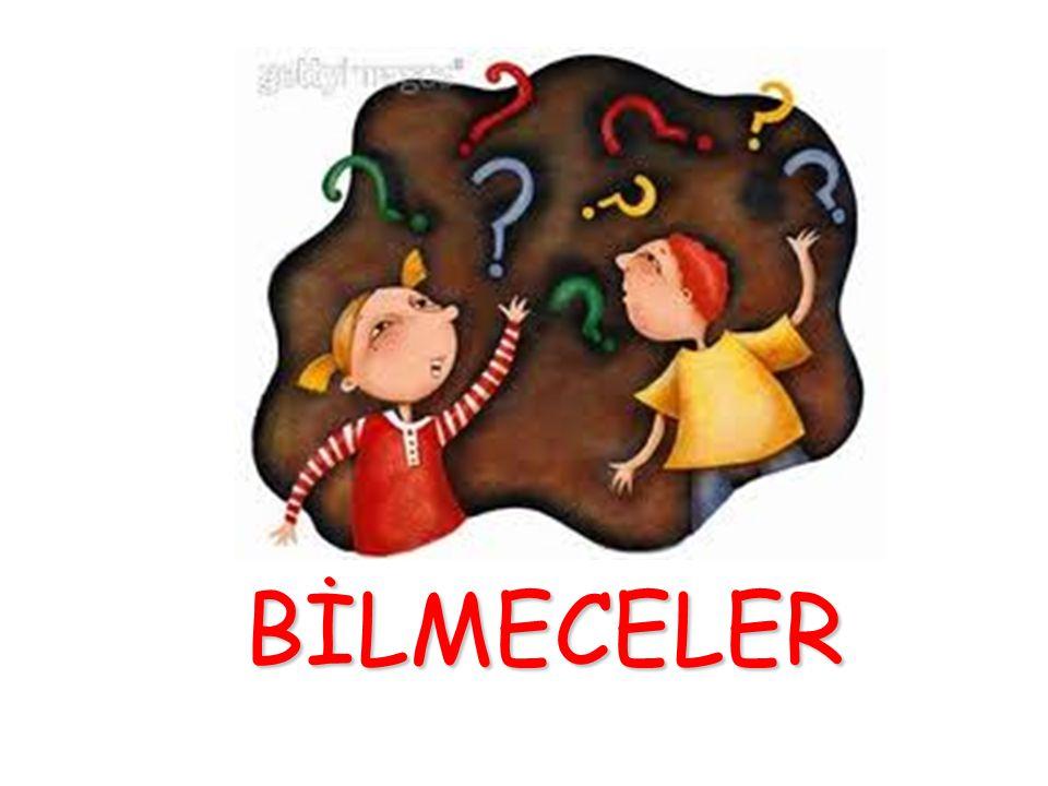 Türk Bayrağı Rengi kırmızı, var hilali yıldızı, rengi şehidimin kanı bilin bakalım bu hangi vatanın bayrağı?