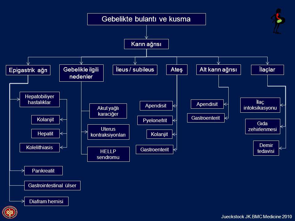 Gebelikte bulantı ve kusma Hepatobiliyer hastalıklar Epigastrik ağrı Kolanjit Apendisit Pyelonefrit İleus / subileus Kolelithiasis Gastroenterit HELLP