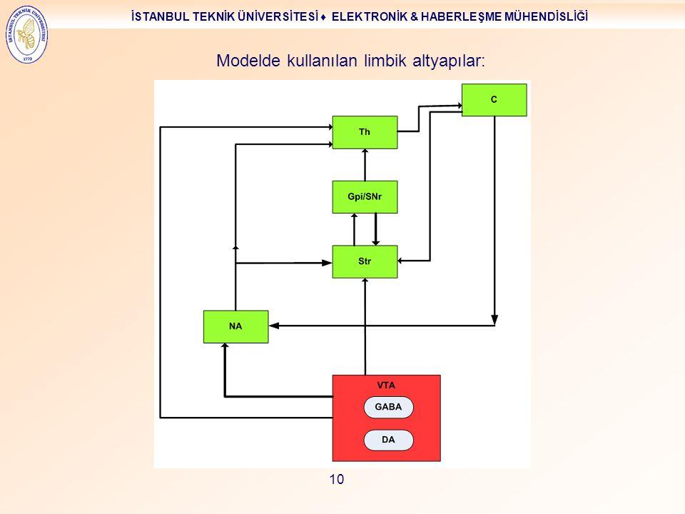 İSTANBUL TEKNİK ÜNİVERSİTESİ ♦ ELEKTRONİK & HABERLEŞME MÜHENDİSLİĞİ 10 Modelde kullanılan limbik altyapılar: