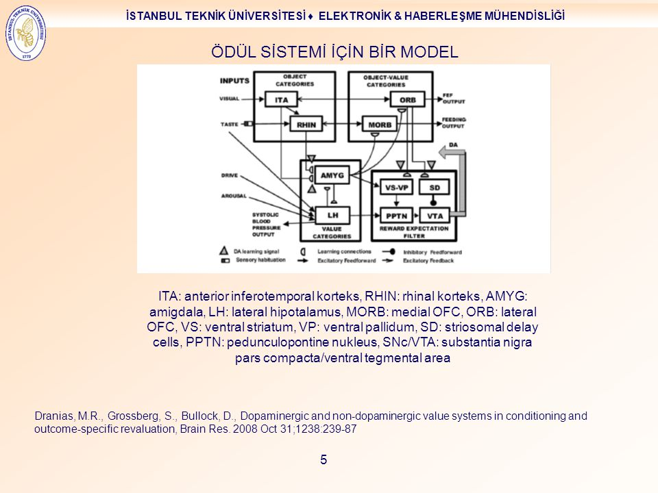 İSTANBUL TEKNİK ÜNİVERSİTESİ ♦ ELEKTRONİK & HABERLEŞME MÜHENDİSLİĞİ 5 ÖDÜL SİSTEMİ İÇİN BİR MODEL Dranias, M.R., Grossberg, S., Bullock, D., Dopaminergic and non-dopaminergic value systems in conditioning and outcome-specific revaluation, Brain Res.