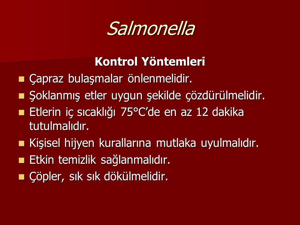 Salmonella Kaynakları - Hasta insanların sindirim sistemi, kırmızı & beyaz et, yumurta, çiğ süt Kaynakları - Hasta insanların sindirim sistemi, kırmız