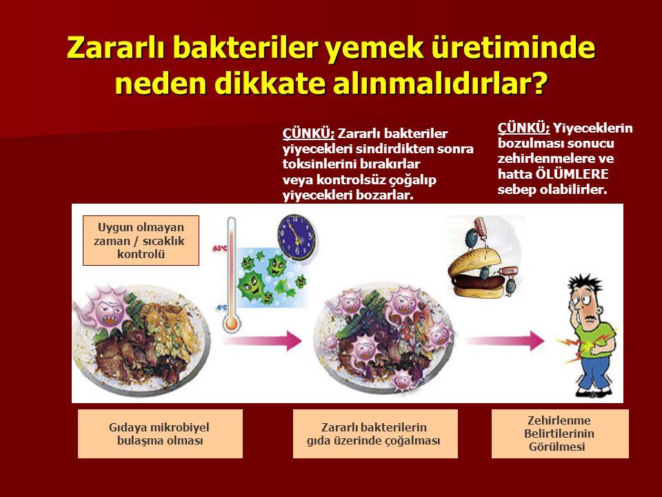 Zararlı bakteriler yemek üretiminde neden dikkate alınmalıdırlar.