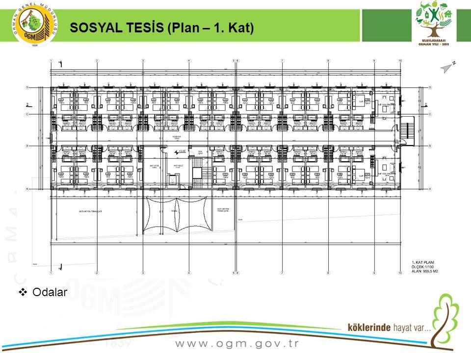 16/12/2010 Kurumsal Kimlik 17 SOSYAL TESİS (Plan – 1. Kat)  Odalar