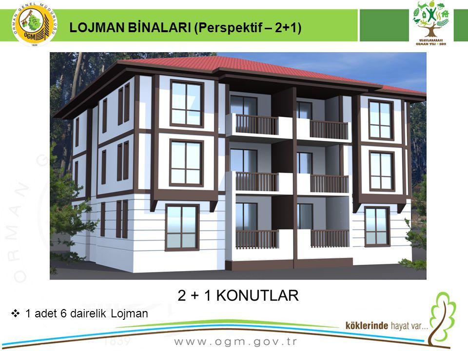 16/12/2010 Kurumsal Kimlik 18 LOJMAN BİNALARI (Perspektif – 2+1)  1 adet 6 dairelik Lojman