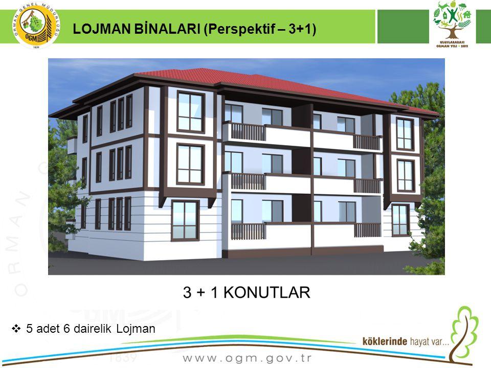 16/12/2010 Kurumsal Kimlik 19 LOJMAN BİNALARI (Perspektif – 3+1)  5 adet 6 dairelik Lojman