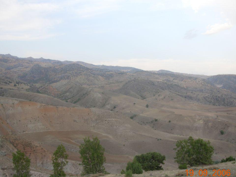BAYIRDİVAN-1 MİKROHAVZA PLANI TANITIM BİLGİLERİ UYGULAMA BİRİMLERİ (MERKEZ) -Çevre ve Orman Bakanlığı 1.