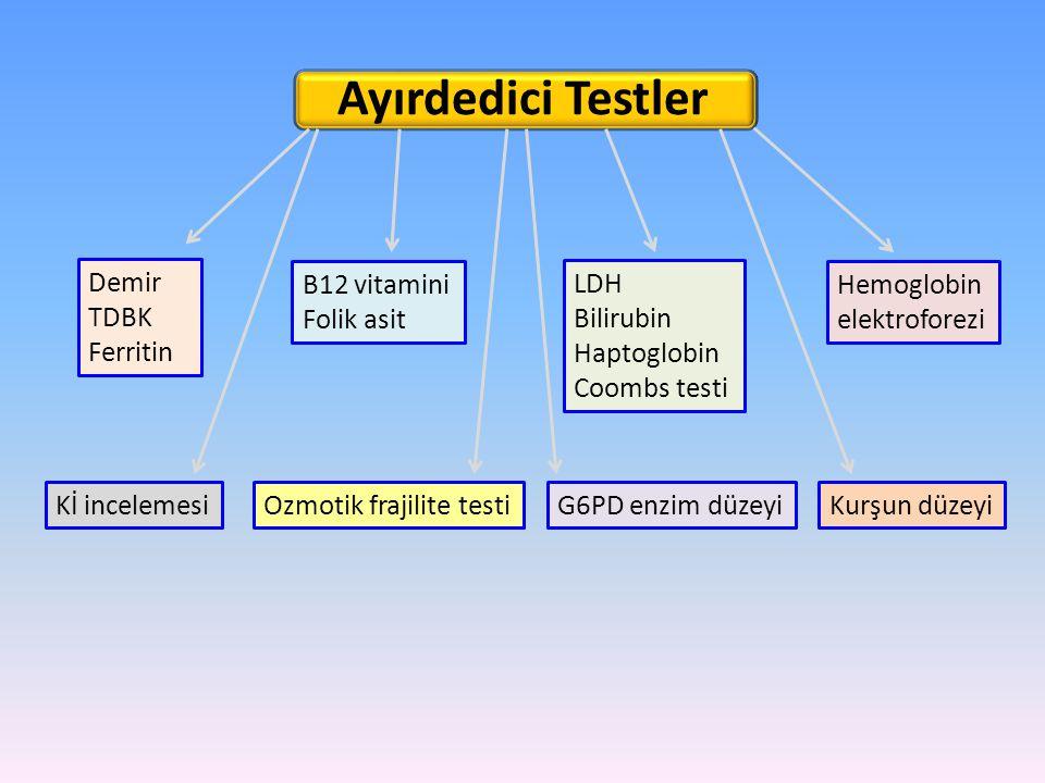 Ayırdedici Testler B12 vitamini Folik asit LDH Bilirubin Haptoglobin Coombs testi Demir TDBK Ferritin Hemoglobin elektroforezi Kİ incelemesiOzmotik fr