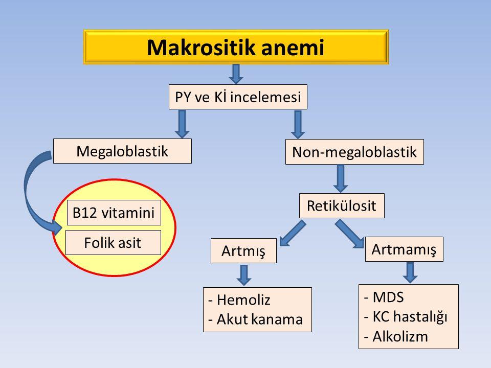 Makrositik anemi PY ve Kİ incelemesi Megaloblastik Non-megaloblastik B12 vitamini Folik asit Retikülosit Artmış Artmamış - Hemoliz - Akut kanama - MDS