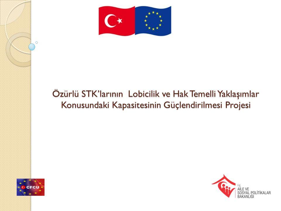 Özürlü STK'larının Lobicilik ve Hak Temelli Yaklaşımlar Konusundaki Kapasitesinin Güçlendirilmesi Projesi