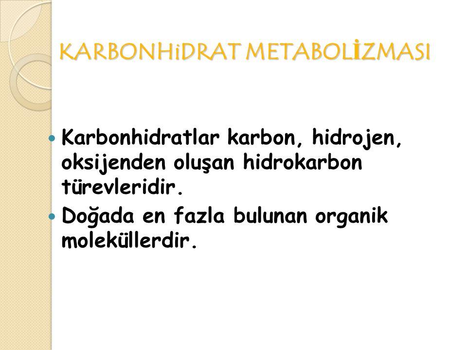 KARBONHiDRATLAR Basit hidrokarbonlarda hidrojen ve oksijen suda olduğu gibi aynı oranda bulunur: her karbon atomu için bir oksijen ve iki hidrojen atomu vardır.