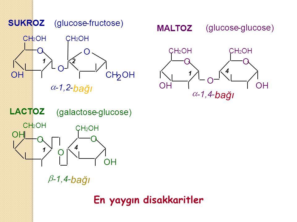 O CH 2 OH O O CH 2 OH SUKROZ (glucose-fructose)  -1,2- bağı OH CH 2 OH O O O LACTOZ (galactose-glucose)  -1,4- bağı OH CH 2 OH CH 2 OH O O O MALTOZ (glucose-glucose) OH CH 2 OH CH 2 OH  -1,4- bağı En yaygın disakkaritler 12 1 4 1 4