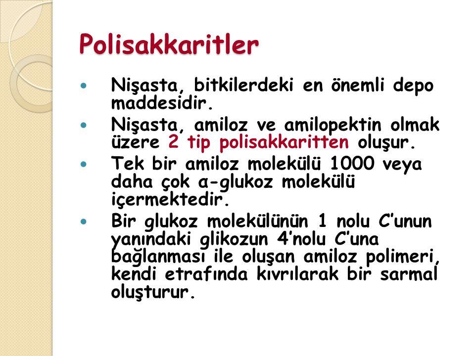Polisakkaritler Nişasta, bitkilerdeki en önemli depo maddesidir.