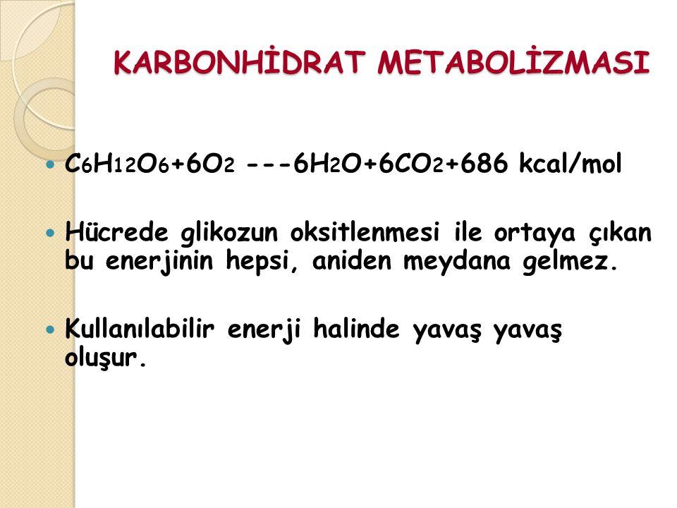 KARBONHİDRAT METABOLİZMASI C 6 H 12 O 6 +6O 2 ---6H 2 O+6CO 2 +686 kcal/mol Hücrede glikozun oksitlenmesi ile ortaya çıkan bu enerjinin hepsi, aniden meydana gelmez.
