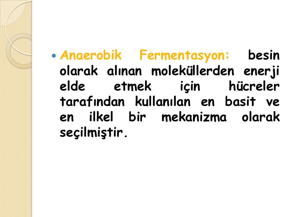 Anaerobik Fermentasyon: besin olarak alınan moleküllerden enerji elde etmek için hücreler tarafından kullanılan en basit ve en ilkel bir mekanizma olarak seçilmiştir.