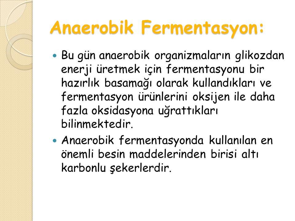 Anaerobik Fermentasyon: Bu gün anaerobik organizmaların glikozdan enerji üretmek için fermentasyonu bir hazırlık basamağı olarak kullandıkları ve fermentasyon ürünlerini oksijen ile daha fazla oksidasyona uğrattıkları bilinmektedir.