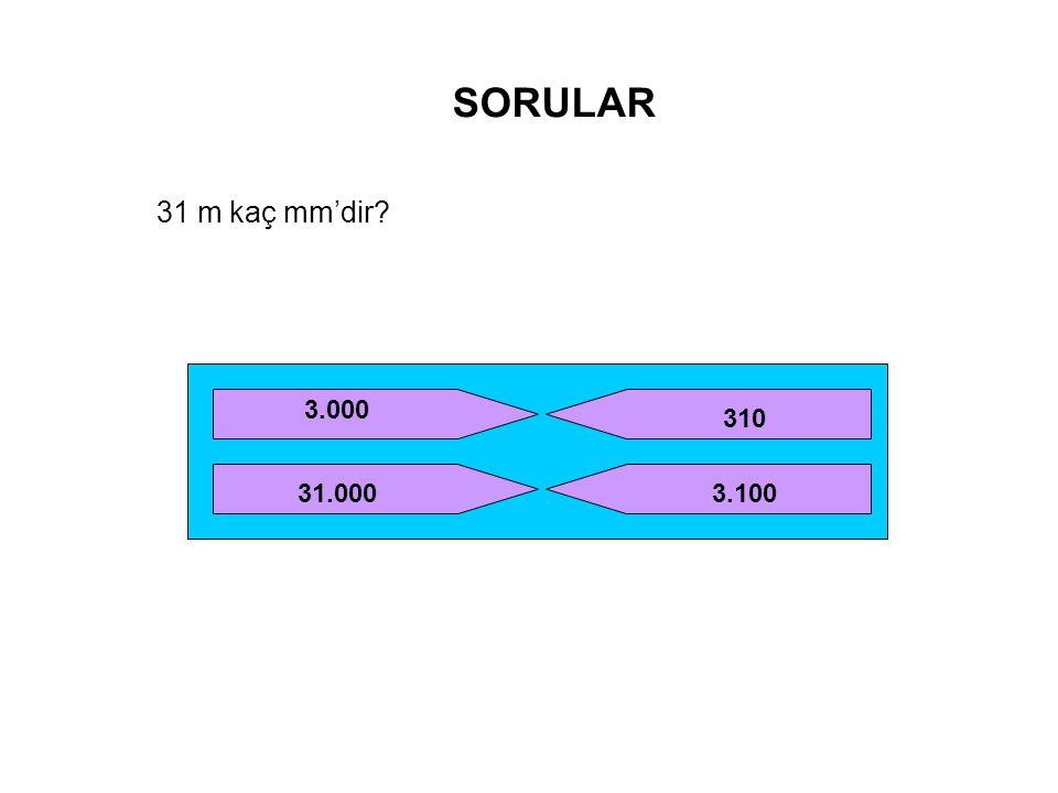 SORULAR 31 m kaç mm'dir? 3.000 31.000 310 3.100