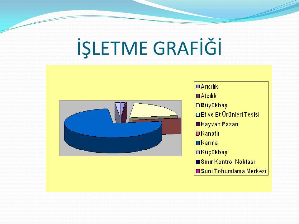 İŞLETME GRAFİĞİ