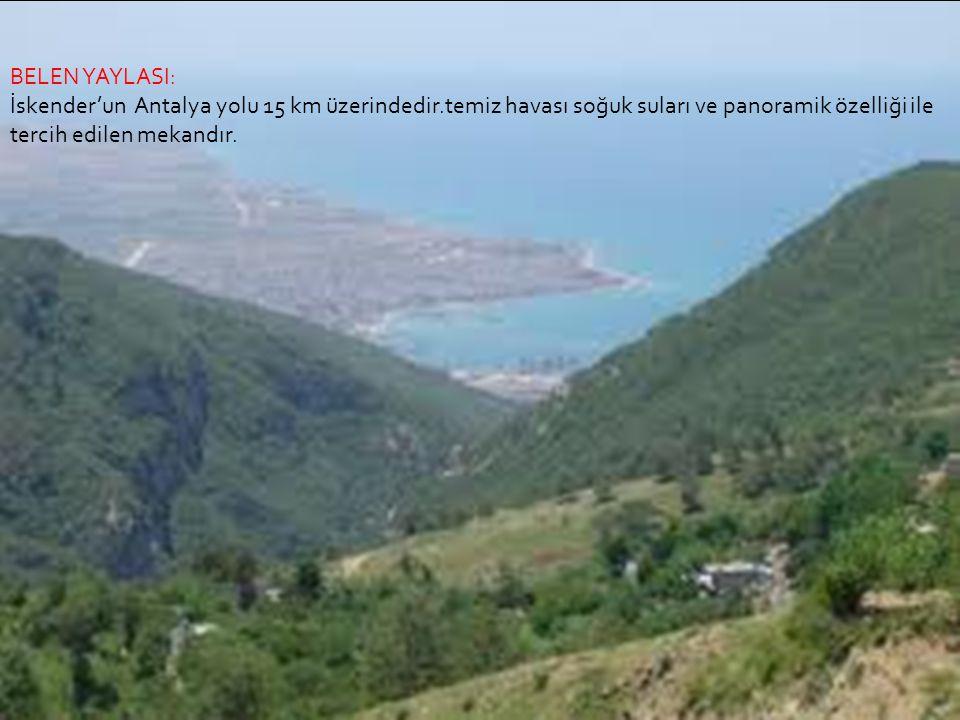 SOĞUKOLUK YAYLASI: İskenderun'a 18 km de oldukça serin bir yayladır.çam ormanlarının içerisinde olup tatlı suları vardır.