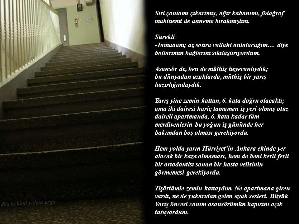 -Sen niye merdivenlerin fotoğrafını çekiyorsun? -Anne, içeri girer misin lütfen; biraz sonra anlatırım… -Hepsi bir enteresan bunların… (ablam da payın