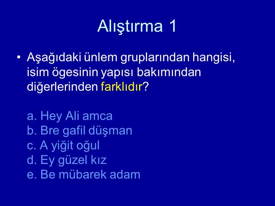 Alıştırma 1 Aşağıdaki ünlem gruplarından hangisi, isim ögesinin yapısı bakımından diğerlerinden farklıdır? a. Hey Ali amca b. Bre gafil düşman c. A yi