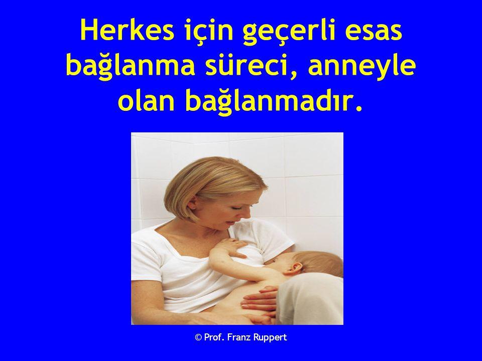 © Prof. Franz Ruppert Herkes için geçerli esas bağlanma süreci, anneyle olan bağlanmadır.