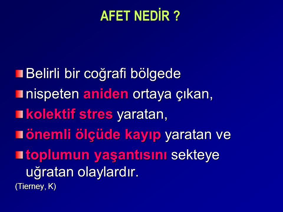TEHLİKE VAR MI?: Kritik Farkındalık/ Risk Algısı Büyük çoğunluk EVET (Erzincan, Dinar ve İstanbul örneklemlerinde)