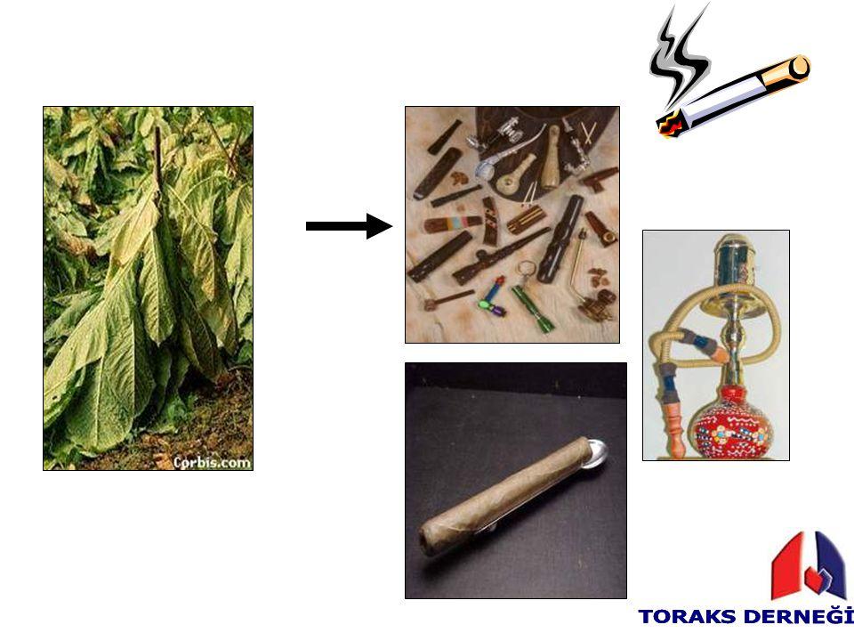 Sigara –Akciğer fonksiyonlarını bozar –Akciğer gelişimini bozar –Öksürük, balgam, hırıltılı solunum, nefes darlığı yapar –Fiziksel performansı, egzersiz yeteneğini bozar