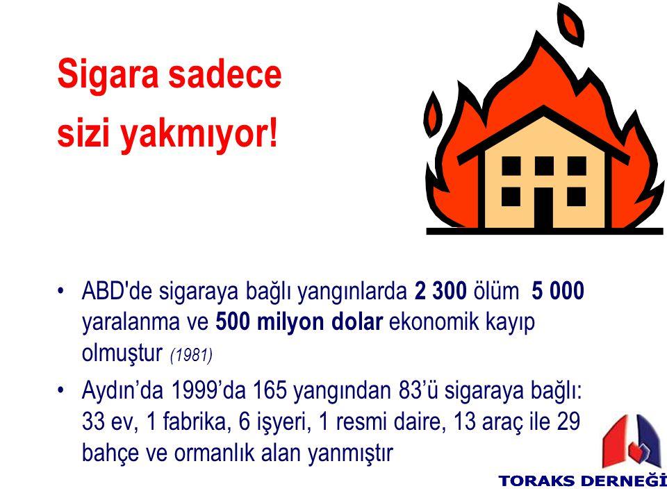 Sigara sadece sizi yakmıyor! ABD'de sigaraya bağlı yangınlarda 2 300 ölüm 5 000 yaralanma ve 500 milyon dolar ekonomik kayıp olmuştur (1981) Aydın'da
