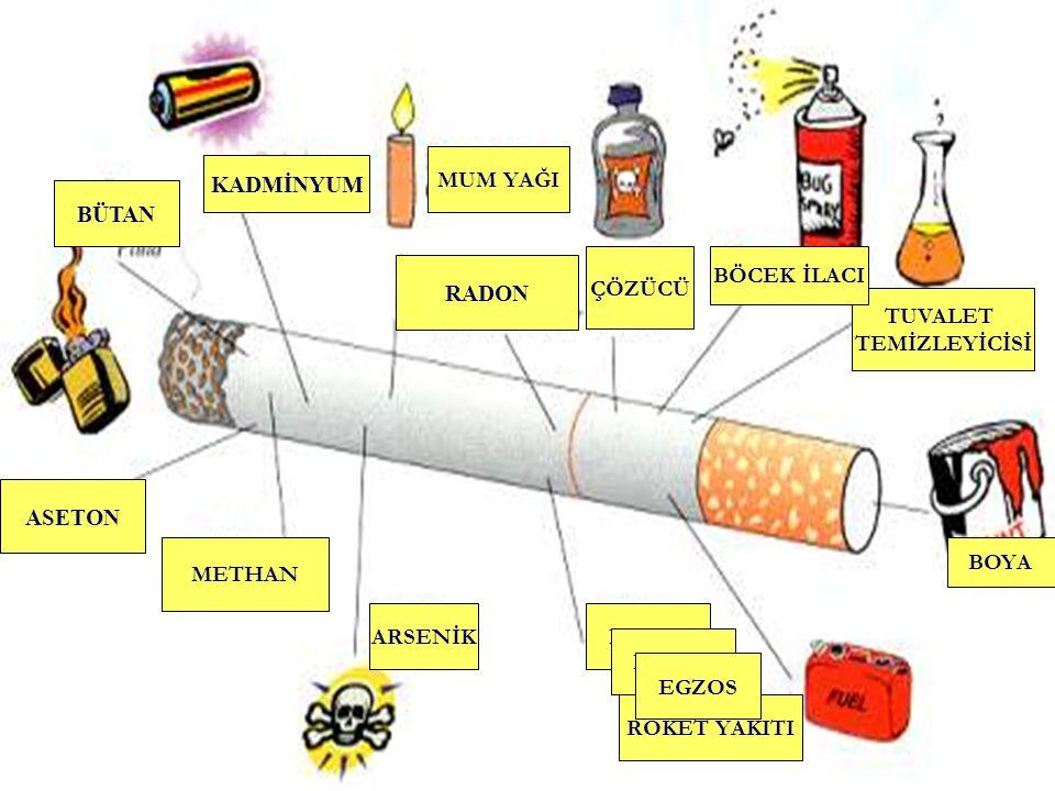 Sigara, içenlerin yarısını Öldürmektedir Her yıl 4 000 000 ölüm sigara nedeniyledir 2020' de her üç erişkinden birinin ölümü sigaradan olacaktır
