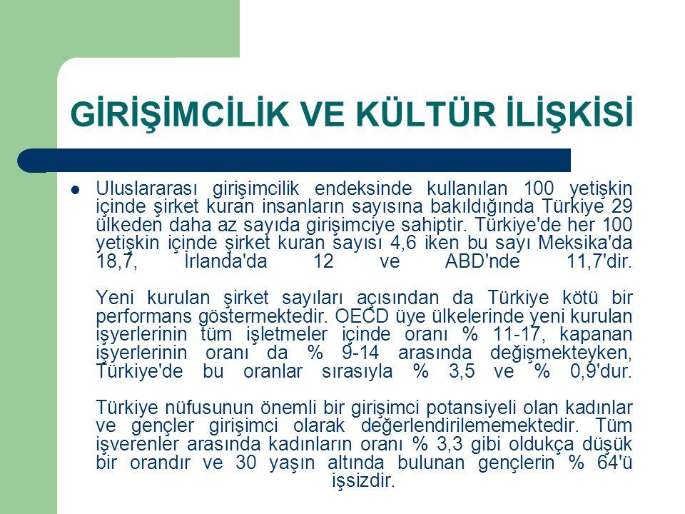 GİRİŞİMCİLİK VE KÜLTÜR İLİŞKİSİ Uluslararası girişimcilik endeksinde kullanılan 100 yetişkin içinde şirket kuran insanların sayısına bakıldığında Türkiye 29 ülkeden daha az sayıda girişimciye sahiptir.