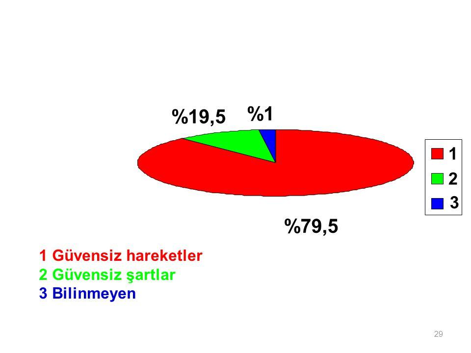 29 %79,5 %19,5 %1 3 1 2 1 Güvensiz hareketler 2 Güvensiz şartlar 3 Bilinmeyen