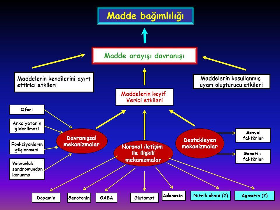 Maddelerin keyif Verici etkileri Maddelerin koşullanmış uyarı oluşturucu etkileri Maddelerin kendilerini ayırt ettirici etkileri Nöronal iletişim ile
