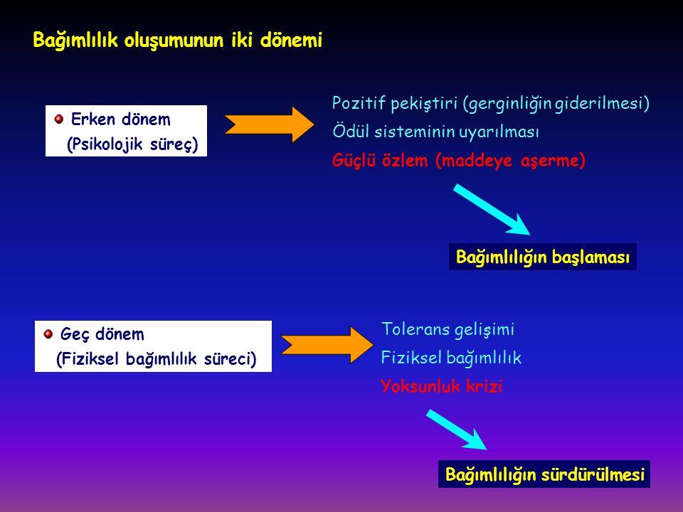 Bağımlılık oluşumunun iki dönemi Erken dönem (Psikolojik süreç) Pozitif pekiştiri (gerginliğin giderilmesi) Ödül sisteminin uyarılması Güçlü özlem (ma