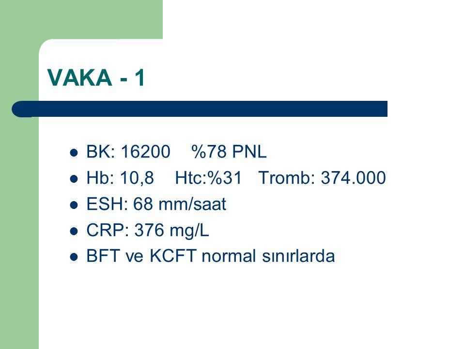 VAKA - 1 BK: 16200 %78 PNL Hb: 10,8 Htc:%31 Tromb: 374.000 ESH: 68 mm/saat CRP: 376 mg/L BFT ve KCFT normal sınırlarda