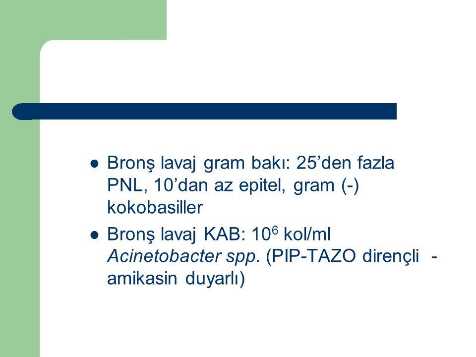 Bronş lavaj gram bakı: 25'den fazla PNL, 10'dan az epitel, gram (-) kokobasiller Bronş lavaj KAB: 10 6 kol/ml Acinetobacter spp. (PIP-TAZO dirençli -
