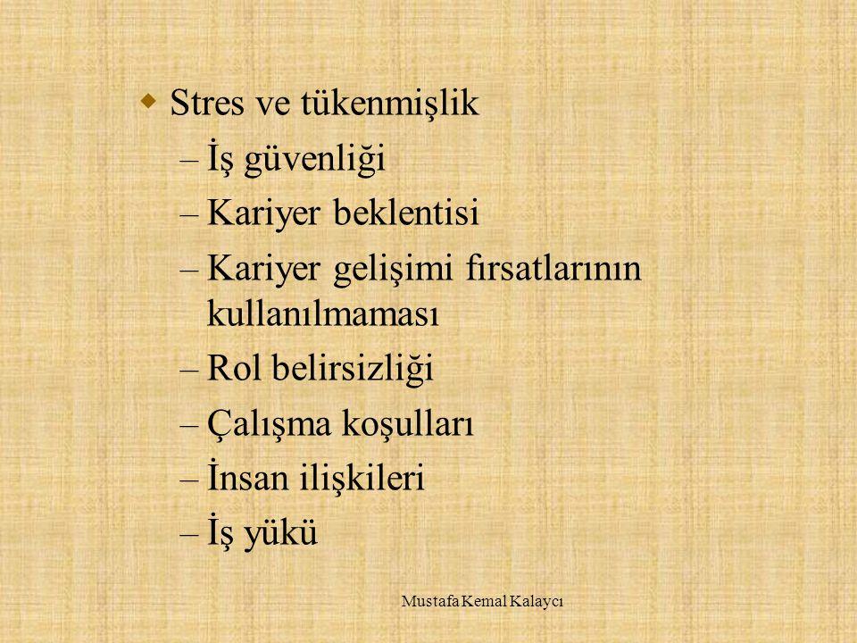  Stres ve tükenmişlik – İş güvenliği – Kariyer beklentisi – Kariyer gelişimi fırsatlarının kullanılmaması – Rol belirsizliği – Çalışma koşulları – İnsan ilişkileri – İş yükü Mustafa Kemal Kalaycı