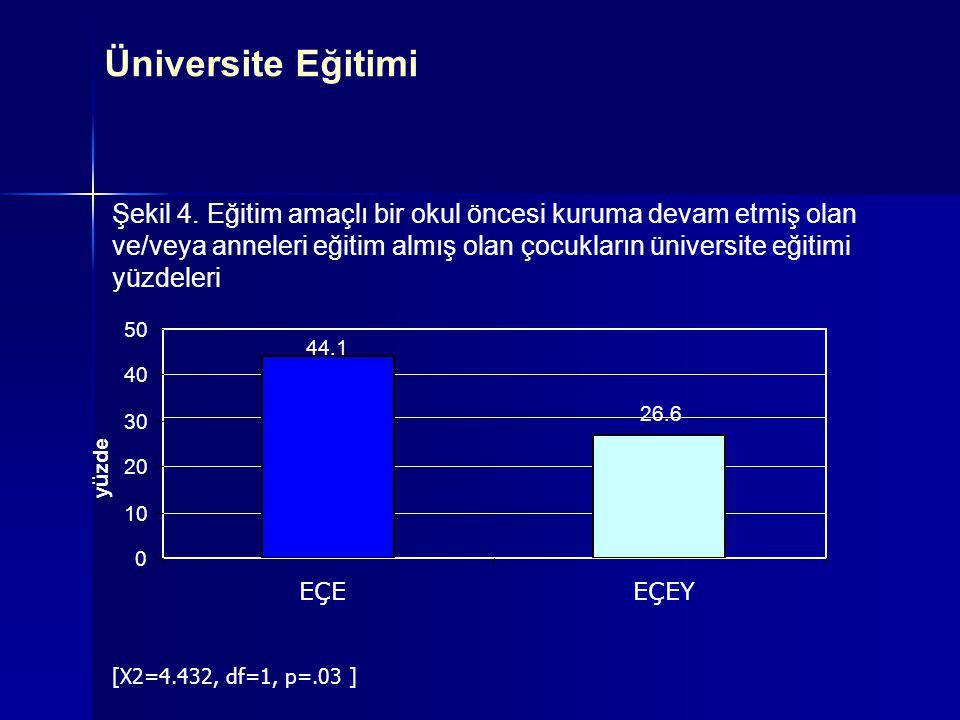 Şekil 4. Eğitim amaçlı bir okul öncesi kuruma devam etmiş olan ve/veya anneleri eğitim almış olan çocukların üniversite eğitimi yüzdeleri 44.1 26.6 0