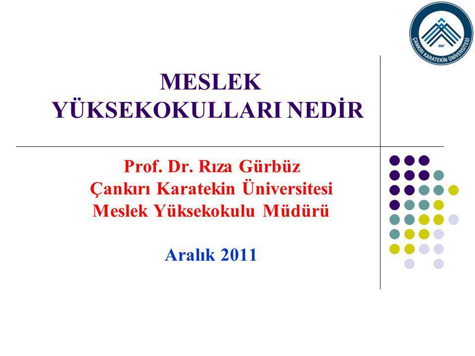 MESLEK YÜKSEKOKULLARI NEDİR Prof. Dr. Rıza Gürbüz Çankırı Karatekin Üniversitesi Meslek Yüksekokulu Müdürü Aralık 2011