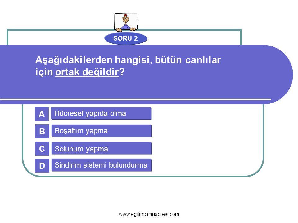 SORU 13 Canlıdır Esnektir Tam geçirgendir Seçici geçirgendir A B C D Aşağıdakilerden hangisi hücre zarının özelliklerinden değildir.