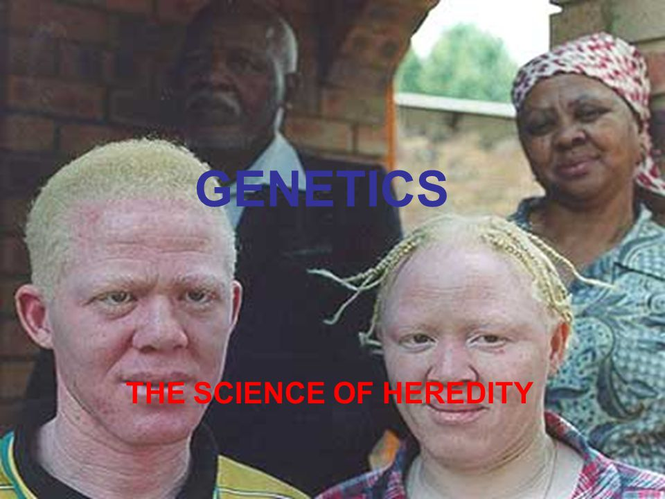 GENETICS THE SCIENCE OF HEREDITY
