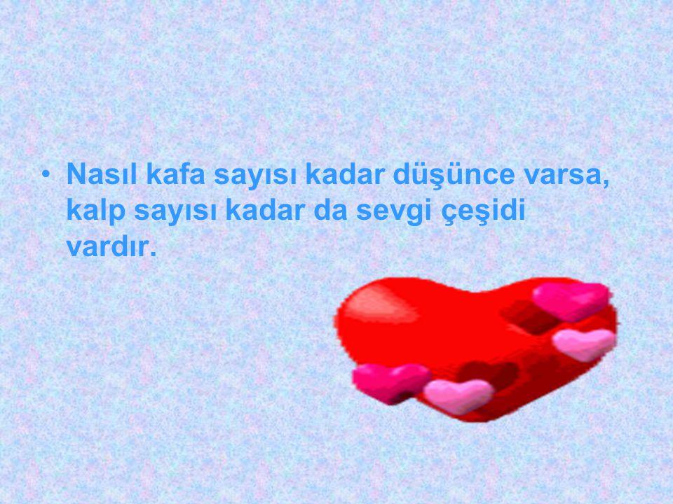 Nasıl kafa sayısı kadar düşünce varsa, kalp sayısı kadar da sevgi çeşidi vardır.