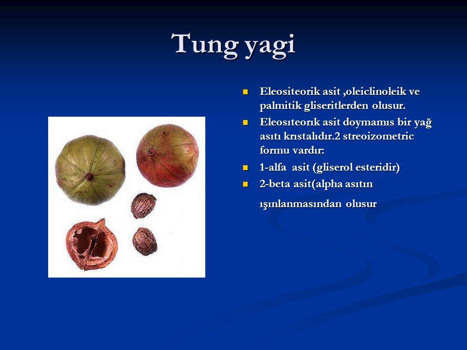 Tung yagi Eleositeorik asit,oleiclinoleik ve palmitik gliseritlerden olusur. Eleosıteorık asit doymamıs bir yağ asıtı krıstalıdır.2 streoizometric for