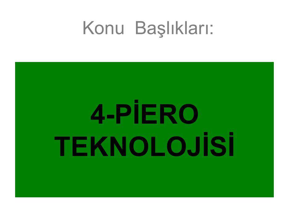Konu Başlıkları: 1-Profesyonel Scout Sistemleri 2-Top ve Oyuncu Hareketlerinin Takibi 3-Bilgisayar Oyunları ve Gerçekle İlişkisi 4-Piero Teknolojisi 5