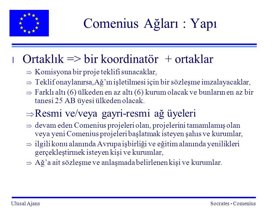 Ulusal Ajans Socrates - Comenius 11 Comenius Ağları : Yapı l Ortaklık => bir koordinatör + ortaklar  Komisyona bir proje teklifi sunacaklar,  Teklif onaylanırsa,Ağ'ın işletilmesi için bir sözleşme imzalayacaklar,  Farklı altı (6) ülkeden en az altı (6) kurum olacak ve bunların en az bir tanesi 25 AB üyesi ülkeden olacak.