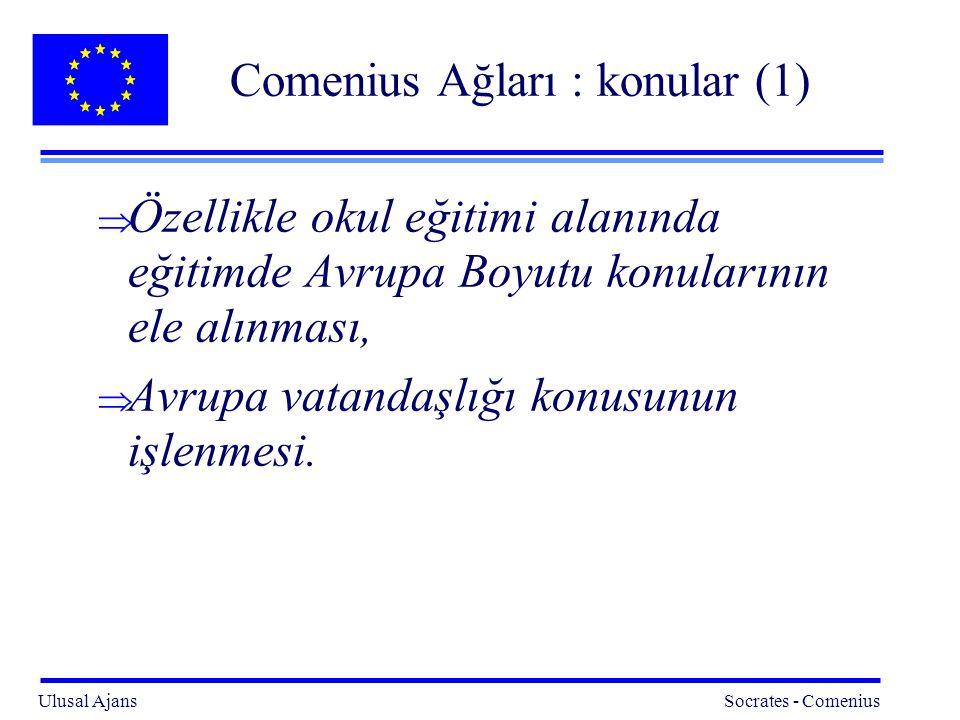 Ulusal Ajans Socrates - Comenius 7 Comenius ağları : konular(2) l Konular şu başlıklarla açıklanabilir:  Dil öğrenimi,  Temel beceriler,  Çevre eğitimi,  Sanat eğitimi ve yaratıcılığın teşvik edilmesi,  Bilim ve Teknoloji