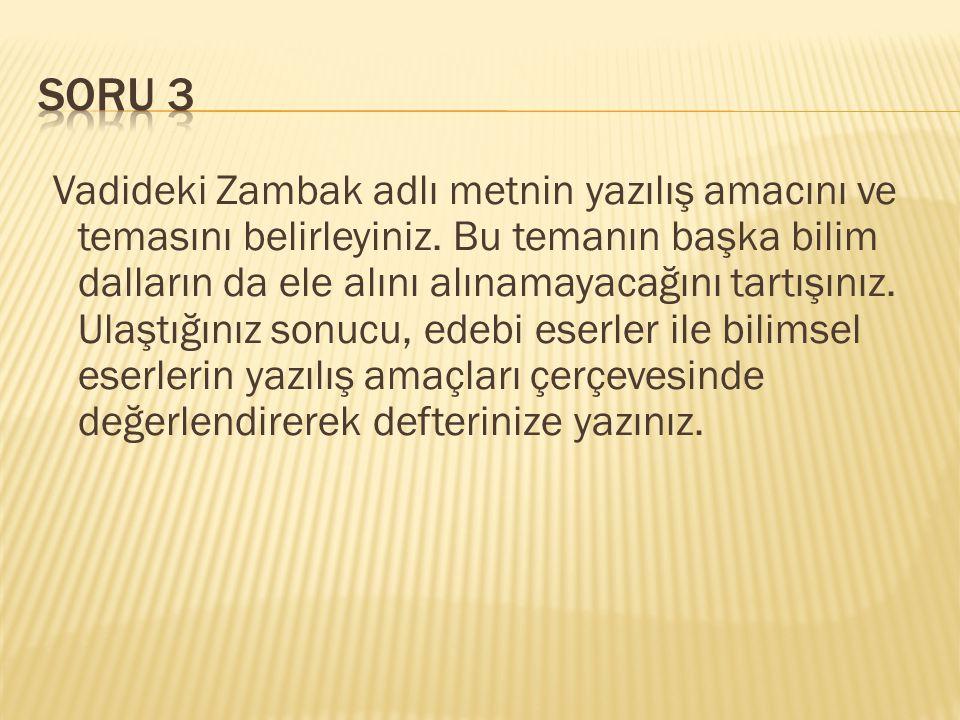 Vadideki Zambak adlı metnin yazılış amacını ve temasını belirleyiniz.