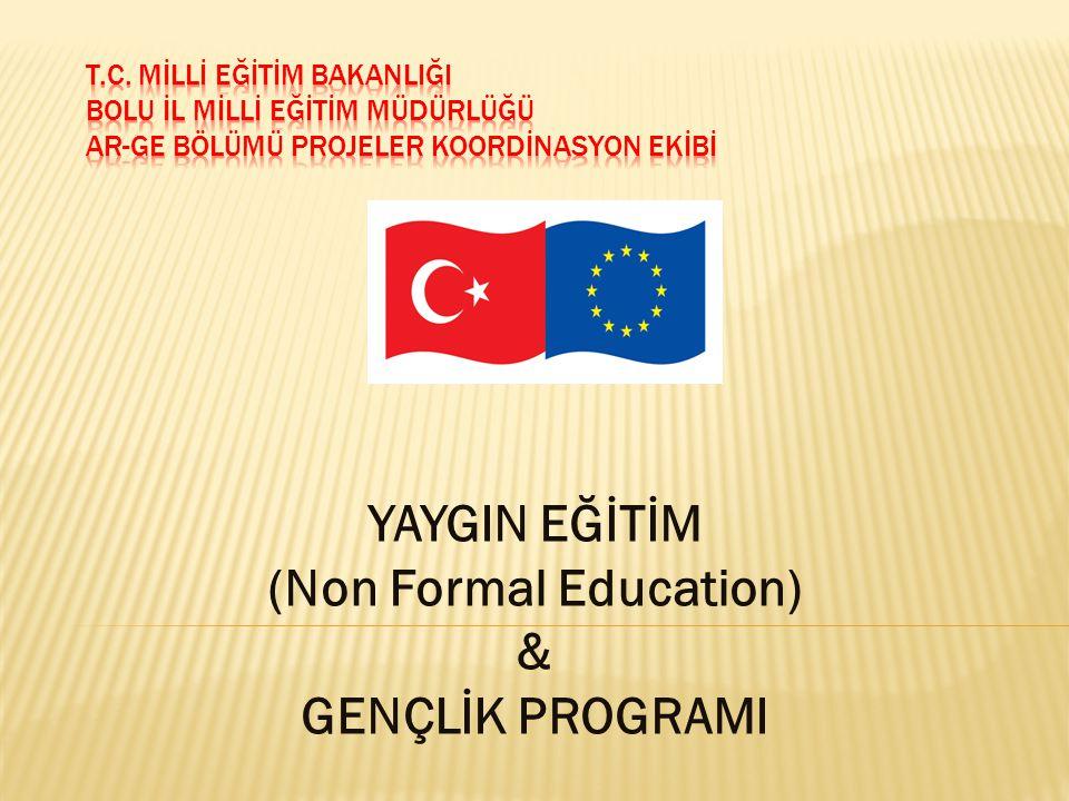 YAYGIN EĞİTİM (Non Formal Education) & GENÇLİK PROGRAMI