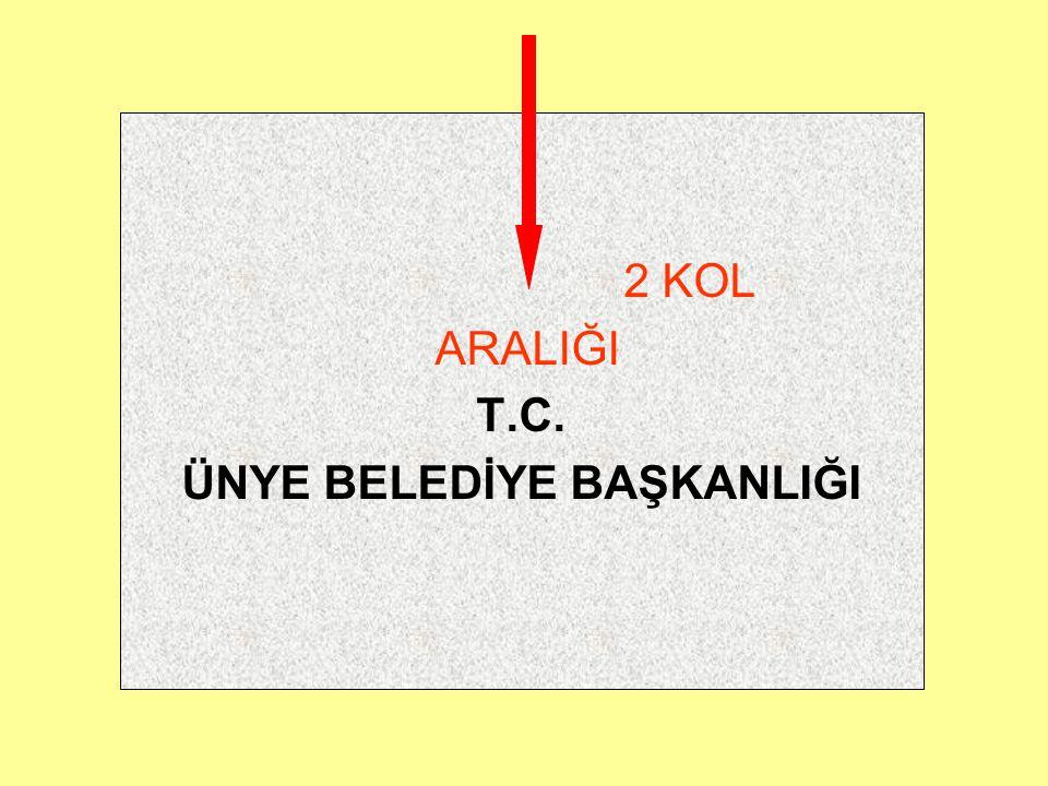Başlık, kağıdın üst kenarından iki aralık aşağıda ve orta bölümünde bulunur. İlk sıraya T.C. kısaltması, bir aralık altına ortalanarak kuruluşun yasal
