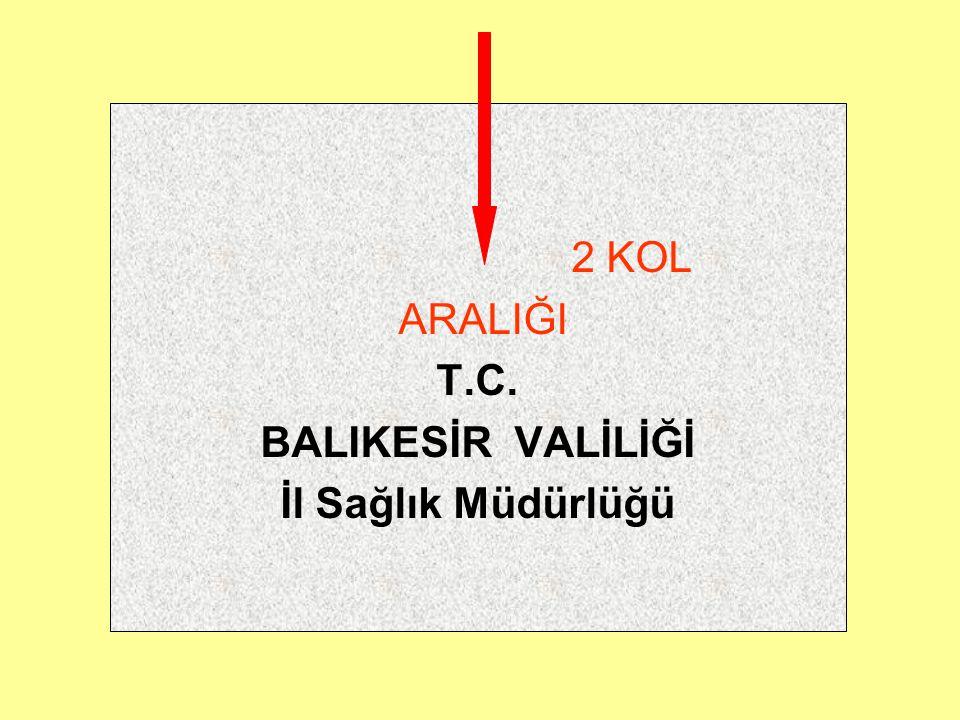 SAYFA NUMARASI Yazı alanının sağ altına toplam sayfa sayısının kaçıncısı olduğunu gösterecek şekilde sayfa numarası verilir.